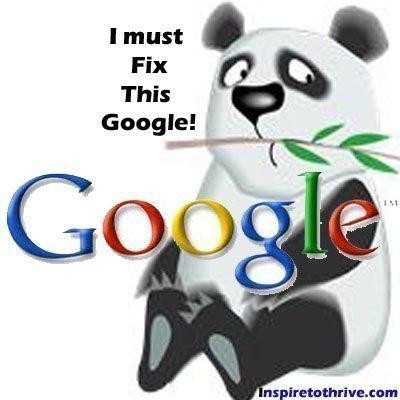 SEO Panda update