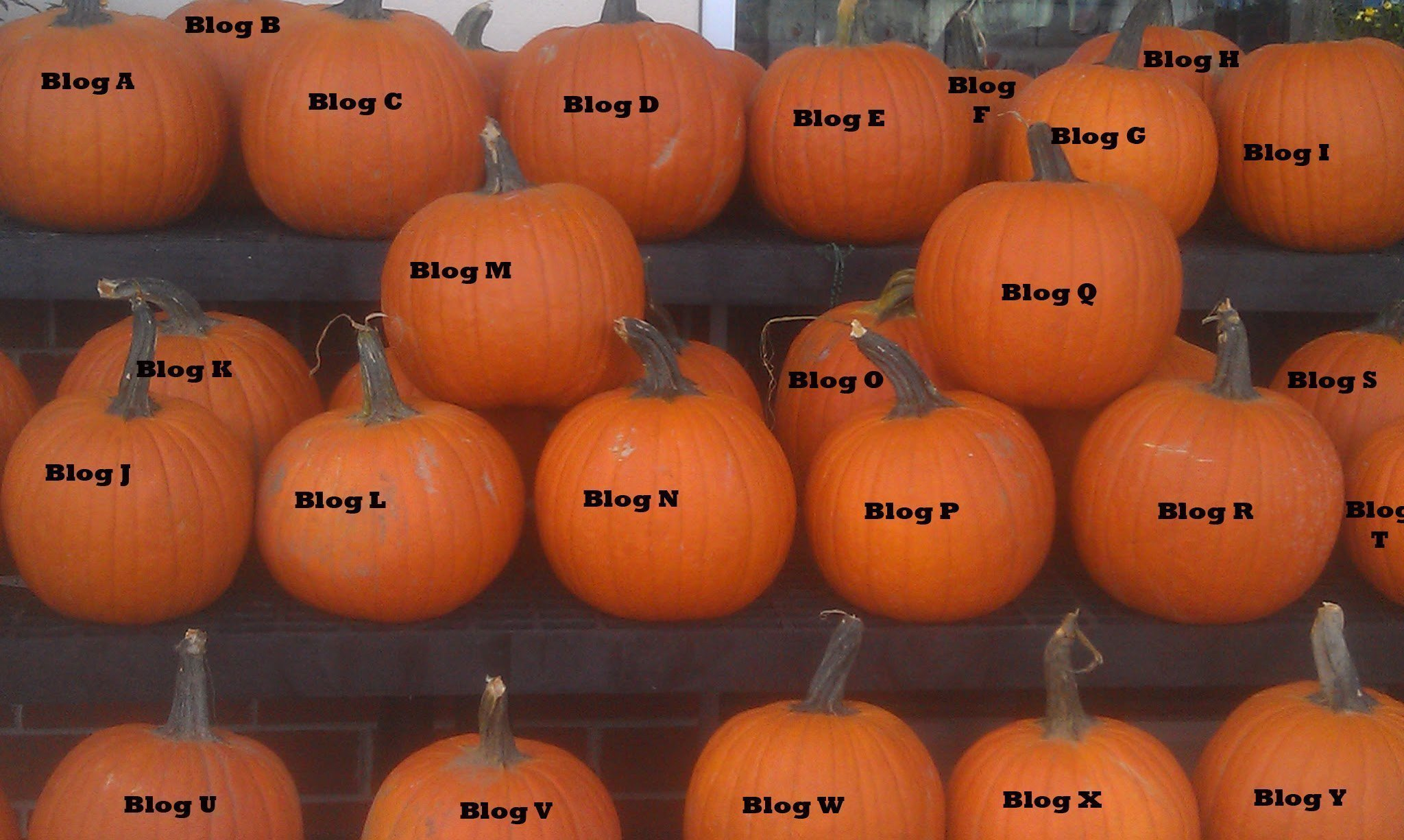 what makes one pumpkin different from another