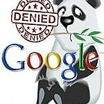 Google Panda denied