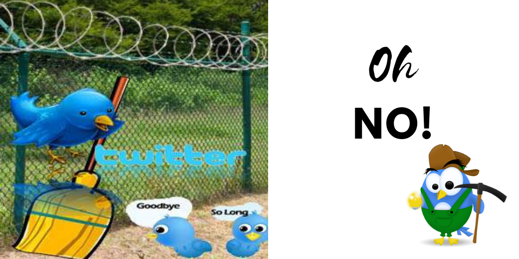 updated Twitter rules for dummies to avoid Twitter jail