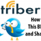 triberr how to use this sharing tool