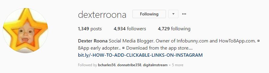 infobunny instagram bio